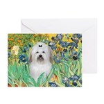 Irises / Coton Greeting Cards (Pk of 20)