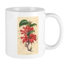 Antique Botanical--Red Flowers Small Mugs