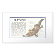 Platypus Decal