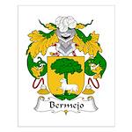 Bermejo Family Crest Small Poster