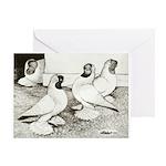 Moorhead Tumbler Pigeons Greeting Card
