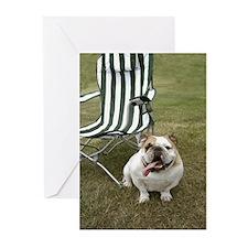 Dog Greeting Cards (Pk of 10)