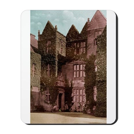 Stanton Court at West Point Mousepad