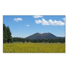Sunset Crater Volcano NM Rectangle Decal
