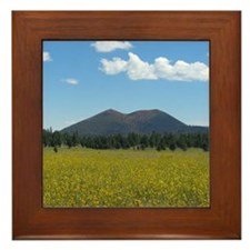 Sunset Crater Volcano NM Framed Tile