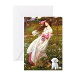 Windflowers / Maltese Greeting Card