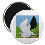 "Russian Pigeon 2.25"" Magnet (100 pack)"