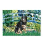 Bridge-Aussie Shep - Tri (L) Postcards (Package of