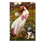 Windflowers-AussieShep (L) Postcards (Package of 8