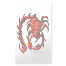 Red Rock Scorpion Rectangle Decal
