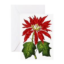 Botanical Poinsettia Blank Greeting Card
