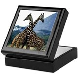 Giraffe Crossing Keepsake Box