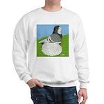 Opal Trumpeter Pigeon Sweatshirt