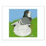 Opal Trumpeter Pigeon Small Poster
