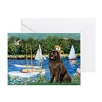 Sailboats & Newfoundland Greeting Card
