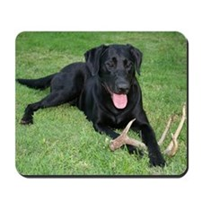Black Lab Storm Mousepad