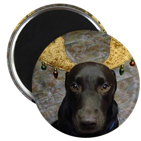 Chocolate Lab Chip Magnet