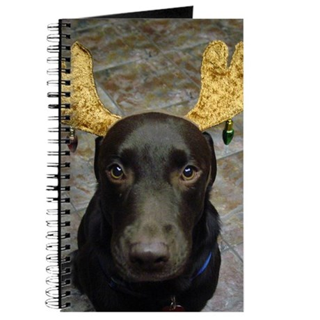Chocolate Lab Chip Journal