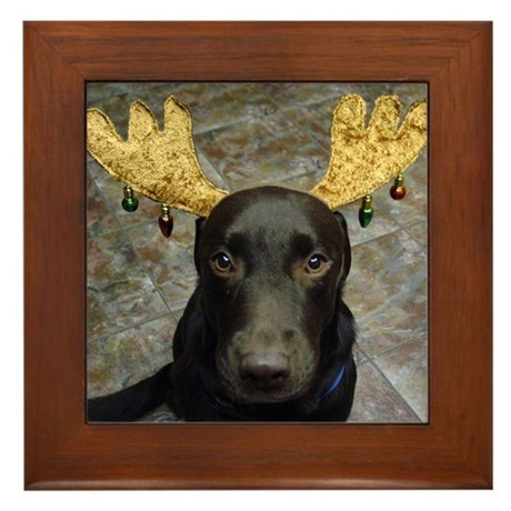 Chocolate Lab Chip Framed Tile