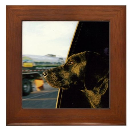 Black Lab Dixie Framed Tile