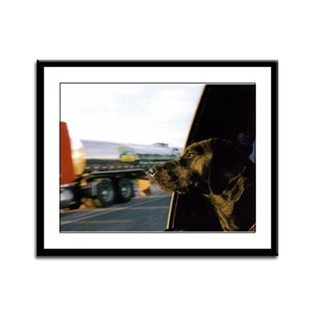 Black Lab Dixie Framed Panel Print