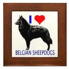 belgian Framed Tile