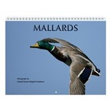 Ducks Wall Calendar