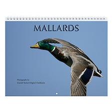 Ducks Wall Calendar