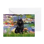 Lilies (2) & Schipperke Greeting Card