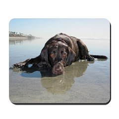 Chocolate Lab KC Mousepad