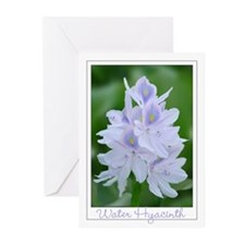 Water Hyacinth Greeting Cards (Pk of 10)