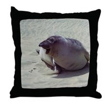 Young Elephant Seal Throw Pillow
