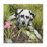 Cute Dalmatian Tile Coaster