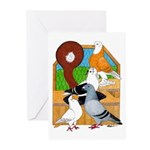 Five Pigeons Greeting Cards (Pk of 10)