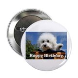 "Bichon Frise 2.25"" Button (100 pack)"