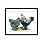 Dark Brahma Chickens Framed Panel Print