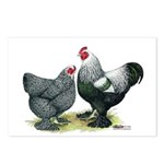 Dark Brahma Chickens Postcards (Package of 8)