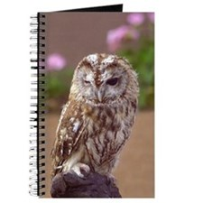 Winking Owl Journal