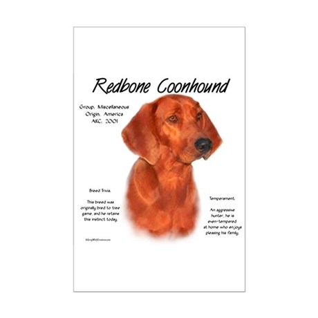 Redbone Coonhound Mini Poster Print