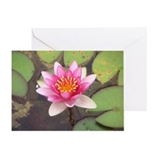 Unique Water lily Greeting Card