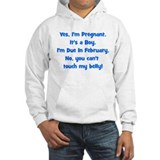 Pregnant Boy due February Bel Hoodie
