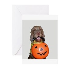 Trick or Treat WHV Greeting Cards (Pk of 10)