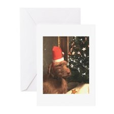 Christmas WHV Greeting Cards (Pk of 20)