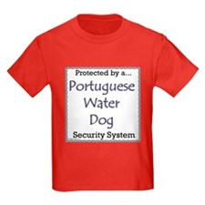 PWD Security T