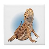 Bearded Dragon Tile Coaster