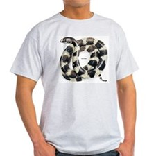 King Snake (Front) Ash Grey T-Shirt