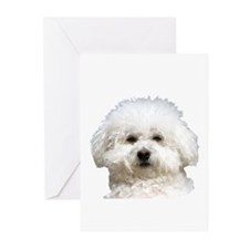 Fifi the Bichon Frise Greeting Cards (Pk of 20)
