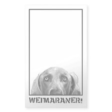 Weimaraner In A Box! Rectangle Decal