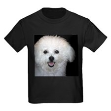 Super Bichon Frise Products T