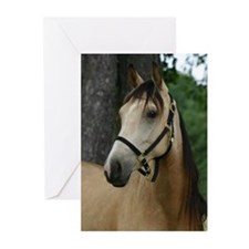 Andalusian filly profile Greeting Cards (Pk of 10)